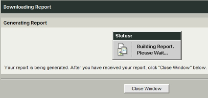 Waiting on Omniture: Your Report is Being Generated
